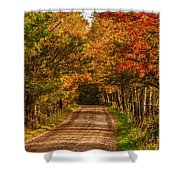 Fall Color Along A Dirt Backroad Shower Curtain by Jeff Folger