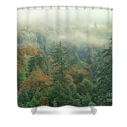 Fall Color And Fog Near Garberville California Shower Curtain