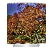Fall Color At Biltmore Shower Curtain