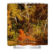 Fall Color Creekside Shower Curtain