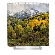 Fall Color In The Rockies Near Ouray Dsc07913 Shower Curtain