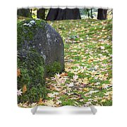 Fall Color Rocks Shower Curtain