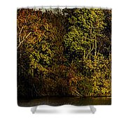 Fall Color Trees V7 Pano Shower Curtain