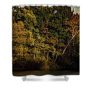 Fall Color Trees V8 Pano Shower Curtain
