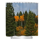 Fall Colors 2 Greeting Card Shower Curtain