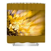Fall Colors 6730 Shower Curtain