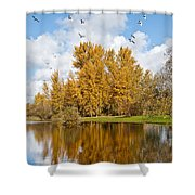 Fall Colors Clouds And Western Gulls Reflected In A Pond Shower Curtain