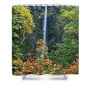 Fall Colors Frame Multnomah Falls Columbia River Gorge Oregon Shower Curtain