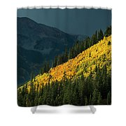 Fall Colors In Aspen Colorado Shower Curtain