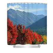 Fall Colors In Joseph Or Shower Curtain