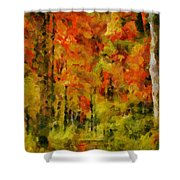Fall Colors In Ohio Shower Curtain