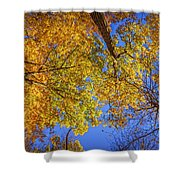 Fall Colors In The Sky  Shower Curtain