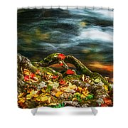 Fall Colors Stream Great Smoky Mountains Painted  Shower Curtain