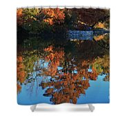 Fall Colors Water Reflection Shower Curtain by Robert D  Brozek