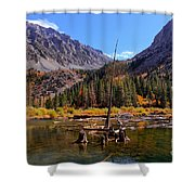Fall Colours Reflection Shower Curtain