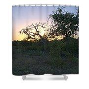 Cedar Park Texas Fall Creek Sunset Shower Curtain