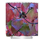 Fall Dogwood Leaf Colors 2 Shower Curtain