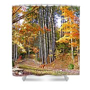 Fall Driveway And Coco The Dog Shower Curtain