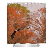 Fall Eagle Shower Curtain