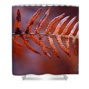 Fall Fern Shower Curtain