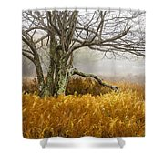 Fall Ferns And Fog Shower Curtain