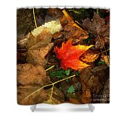 Fall Flames Out Shower Curtain
