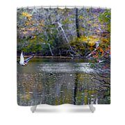 Fall Flight Shower Curtain