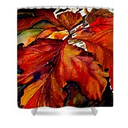 Autumn Dressage Shower Curtain