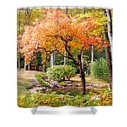 Fall Folage And Pond 2 Shower Curtain