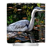 Fall Foliage And Fowl Shower Curtain