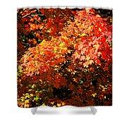 Fall Foliage Colors 21 Shower Curtain