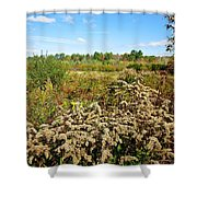 Fall Goldenrod Field Shower Curtain