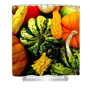 Fall Gourds Shower Curtain