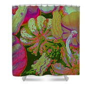 Fall Gourds Pinked Shower Curtain