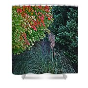 Fall Grass Shower Curtain