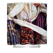 Fall Harvest Corn Shower Curtain
