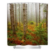 Fall Has Come Shower Curtain