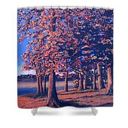 Fall In East Texas Shower Curtain