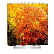Fall In Full Bloom Shower Curtain
