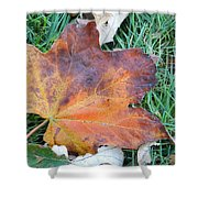Fall In Leaf Shower Curtain