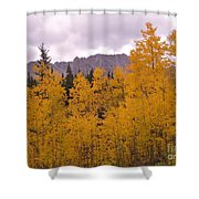 Fall In Maroon Bells Shower Curtain