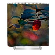 Fall In Texas Shower Curtain