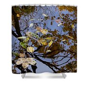 Fall In The Lake In Vienna No. 1 Shower Curtain