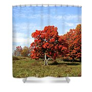 Fall In The Pastures Shower Curtain