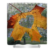 Fall Ing In Love Shower Curtain