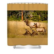 Fall Is Family Time Shower Curtain
