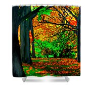 Fall Is Here Shower Curtain