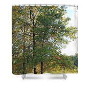 Fall Just Getting A Start Shower Curtain