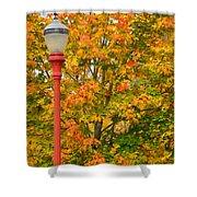 Fall Lamppost Shower Curtain