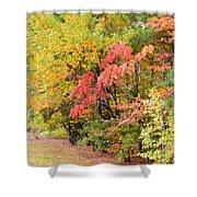 Fall Landscape 3 Shower Curtain